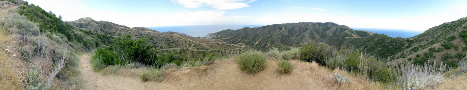 Catalina Island Adventure: Lone Tree Point Hike - 8/15